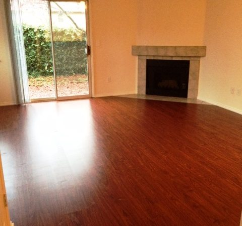 picture of 1069 burton end townhome gas burning fireplace and living room area